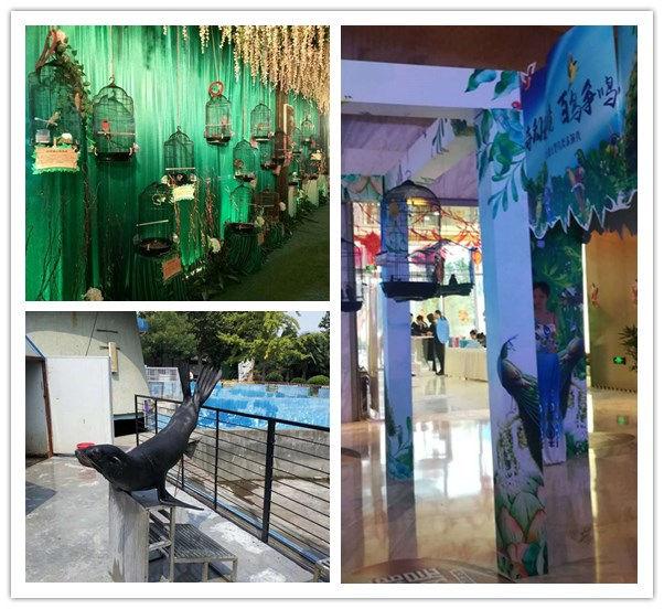 南华海洋动物鱼缸水母展览信誉公司