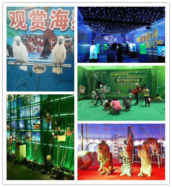 宿州动物租赁公司欢迎欢迎
