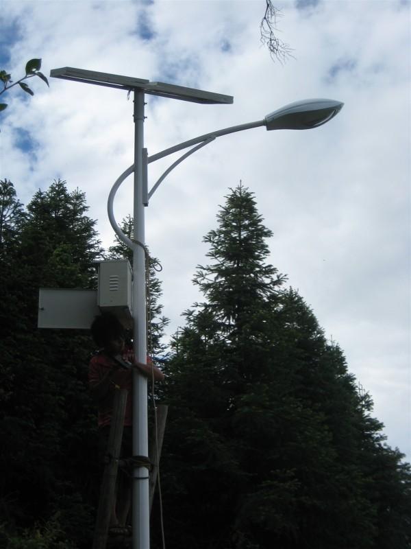 金路灯价格/太阳能路灯销售电话