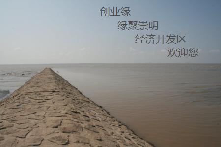 上海青浦区注册外资公司的条件