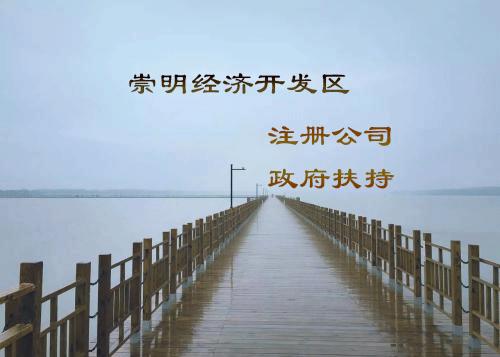 上海宝山区办理独资公司咨询