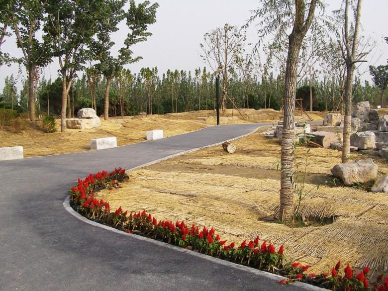新疆维吾尔自治区博尔塔拉蒙古自治州露骨料透水地坪哪家好