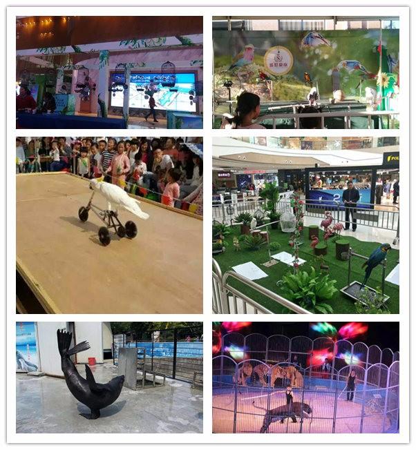 济宁推荐海洋生物展展览出租海洋生物租赁公司