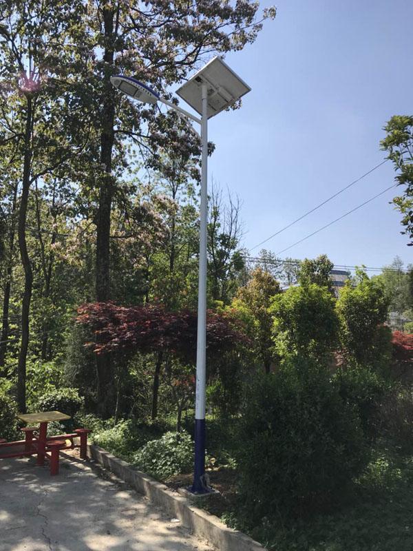 成華LED路燈9米10米廠家直銷批發價格