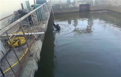 你看看这公司/在日照的水下铺设电缆技术顾问,沉管施工队