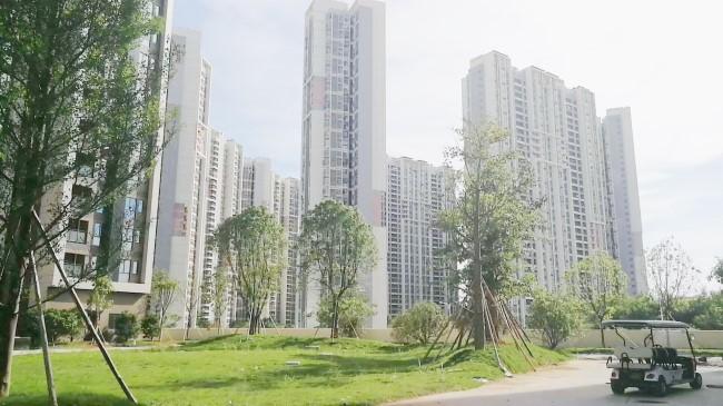 深圳大红本可以吗♉整栋大红本房能买吗龙岗宝龙公馆