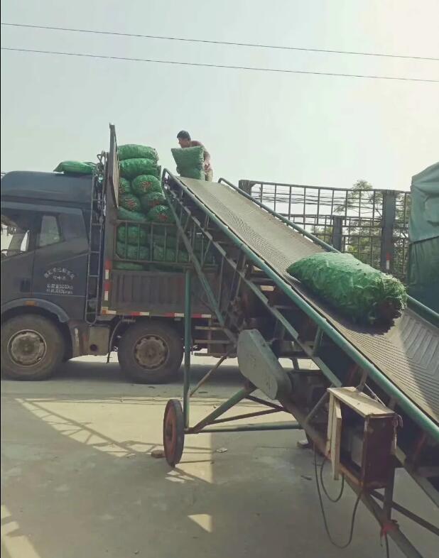 上海到都安果蔬运输(保鲜配送)价格优惠_快速直达