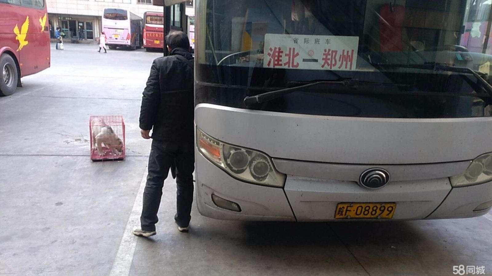 2021;马鞍山到阳豪华卧铺客运专线
