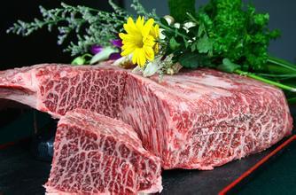 广州港冷冻牛肉进口报关备案代办