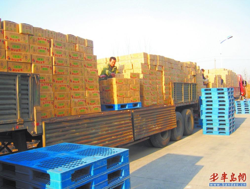 上海到疏附货运公司(物流专线)价格优惠_快速直达