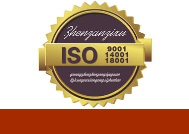 桦甸iso45001系列质量管理体系认证