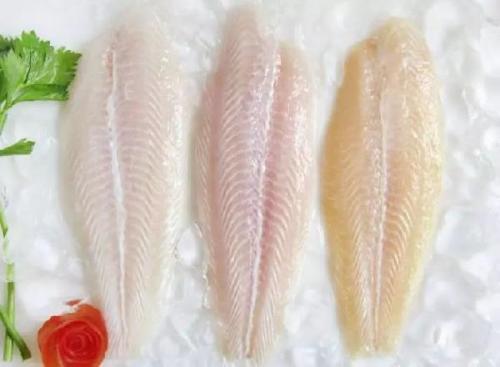 广州港巴沙鱼进口清关手续