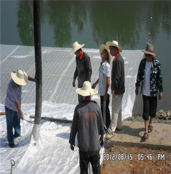 清远清新模袋水下铺设方案原理-技术方案