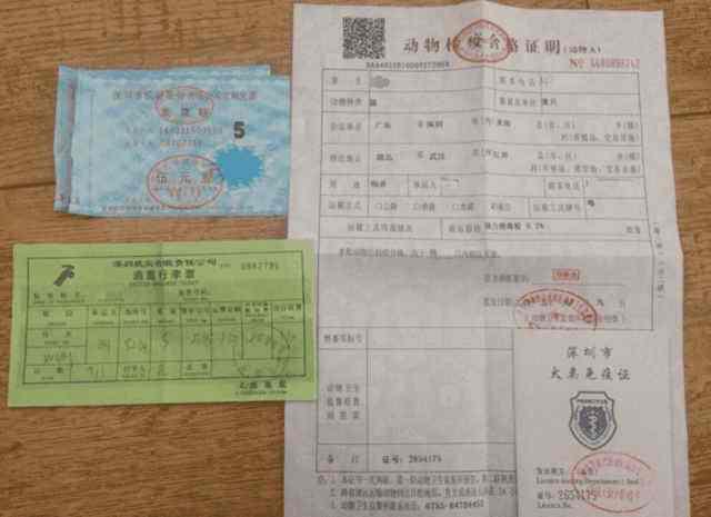 桐乡到临清直达大巴车k1582128驾驶员电话