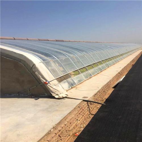 荆州江陵温室大棚重点部分养殖大棚
