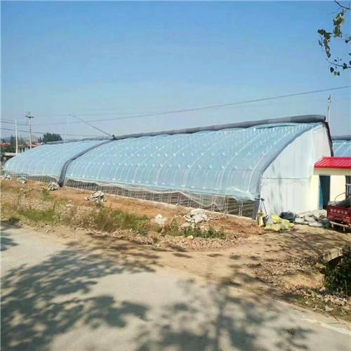 秦皇岛北戴河区设计温室大棚厂家研制双模骨架
