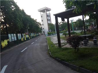 湛江市麻章区马路标线划线经验丰富