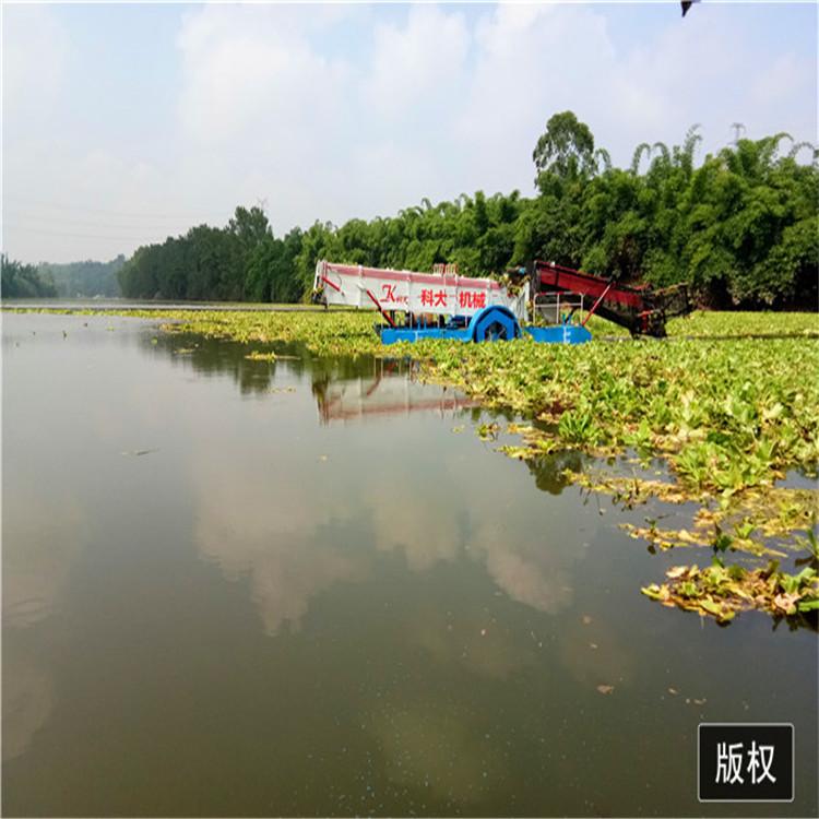 平坝区水葫芦打捞船效率高