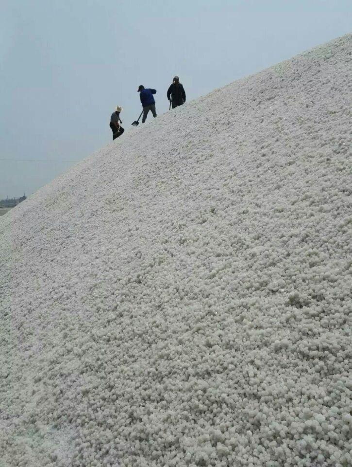 松原废工业盐欢迎选购