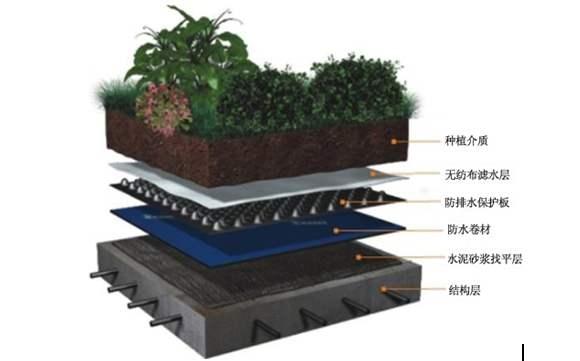 塑料排水板(集团-公司)河北虹吸塑料排水板厂家