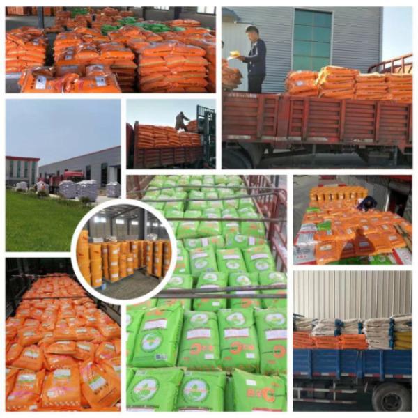 40斤育肥羊饲料(安顺普定)小尾寒羊饲料添加剂