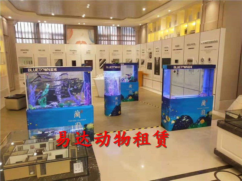 长沙海洋生物展览出租租赁企鹅出租租赁-的联系方式