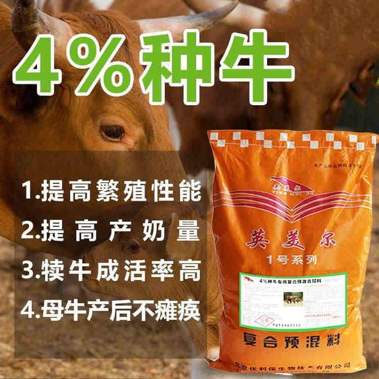 山东聊城母牛饲料和喂养方法-怀孕的母牛能吃牛饲料吗